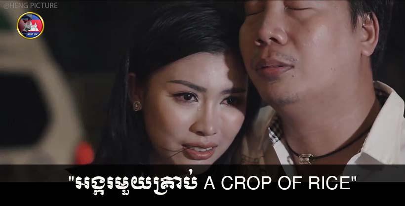 """""""អង្ករមួយគ្រាប់ A crop of rice"""" អាចធ្វើឲ្យអ្នកស្រក់ទឹកភ្នែកដោយមិនដឹងខ្លួន"""